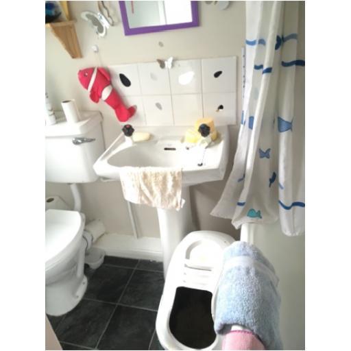 12 Eleventh Street Bathroom 2.png